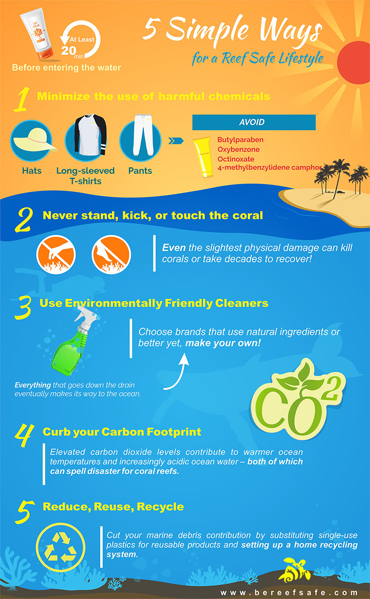 the-5-simple-ways-be-reef-safe-approach-infographic