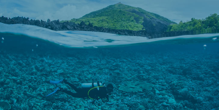90% of snorkeling and diving tourism is concentrated on only 10% of the world's reefs.